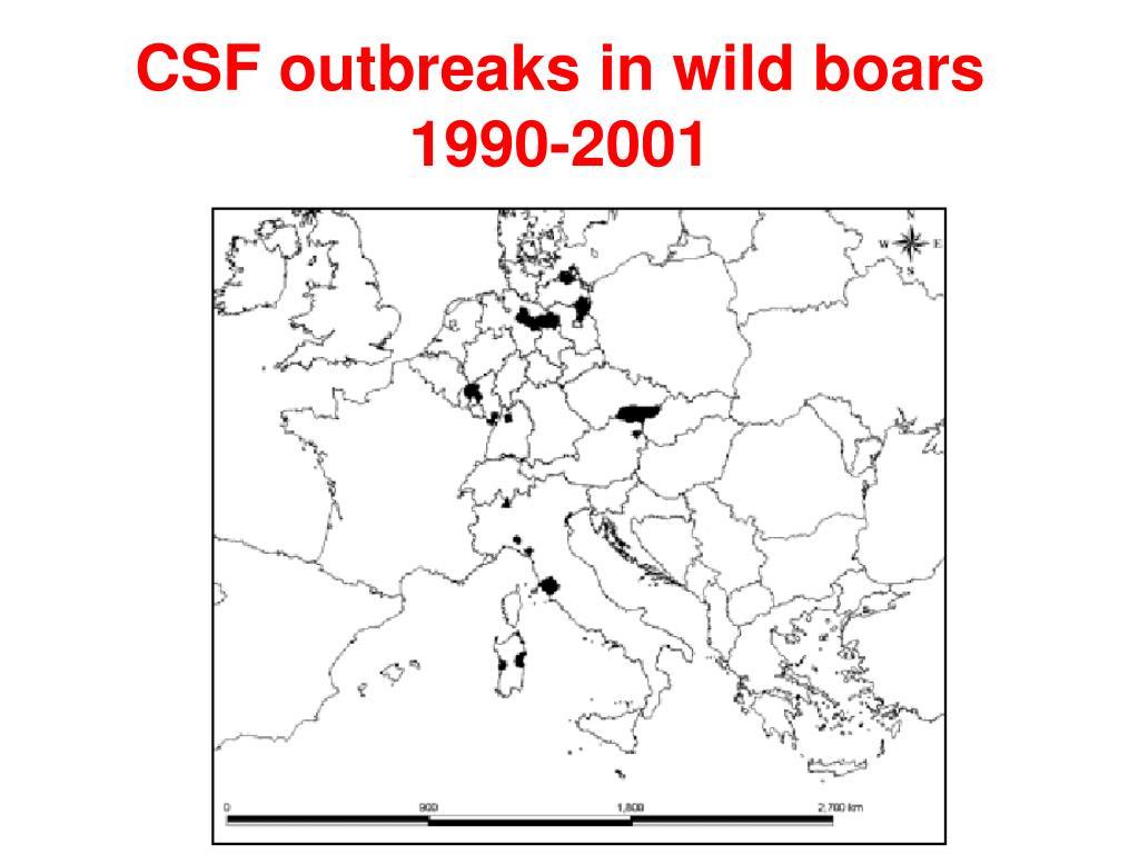 CSF outbreaks in wild boars