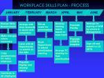 workplace skills plan process