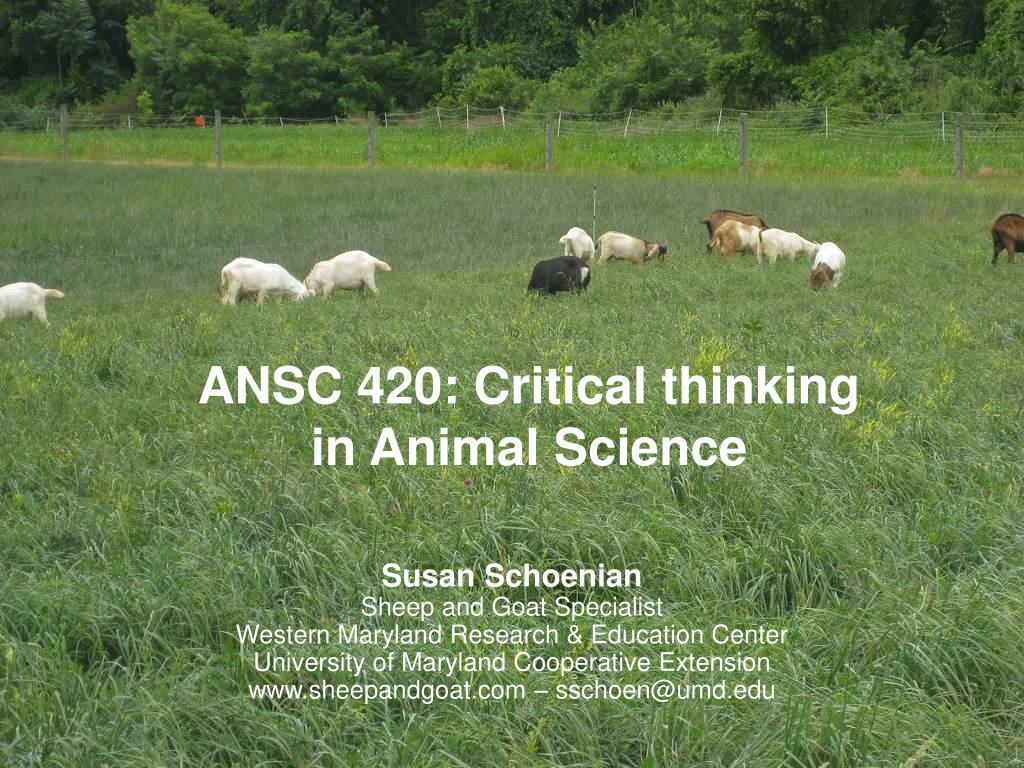ANSC 420: Critical thinking