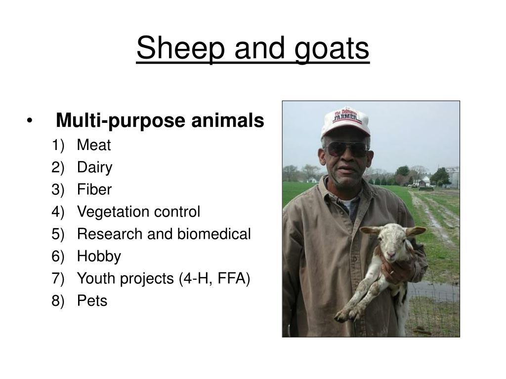 Multi-purpose animals