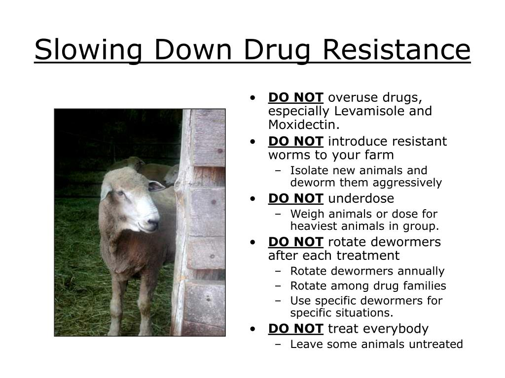 Slowing Down Drug Resistance