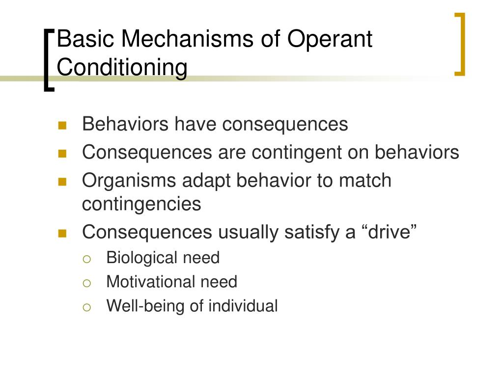 Basic Mechanisms of Operant Conditioning
