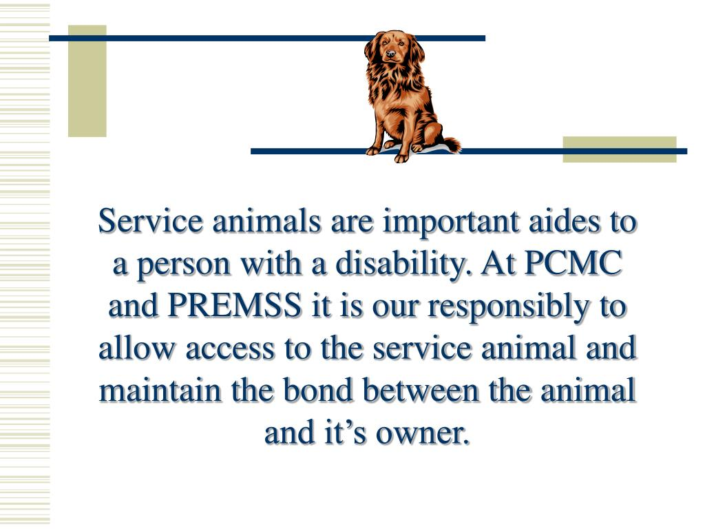 Service animals are important aides to a person with a disability. At PCMC and PREMSS it is our responsibly to allow access to the service animal and maintain the bond between the animal and it's owner.
