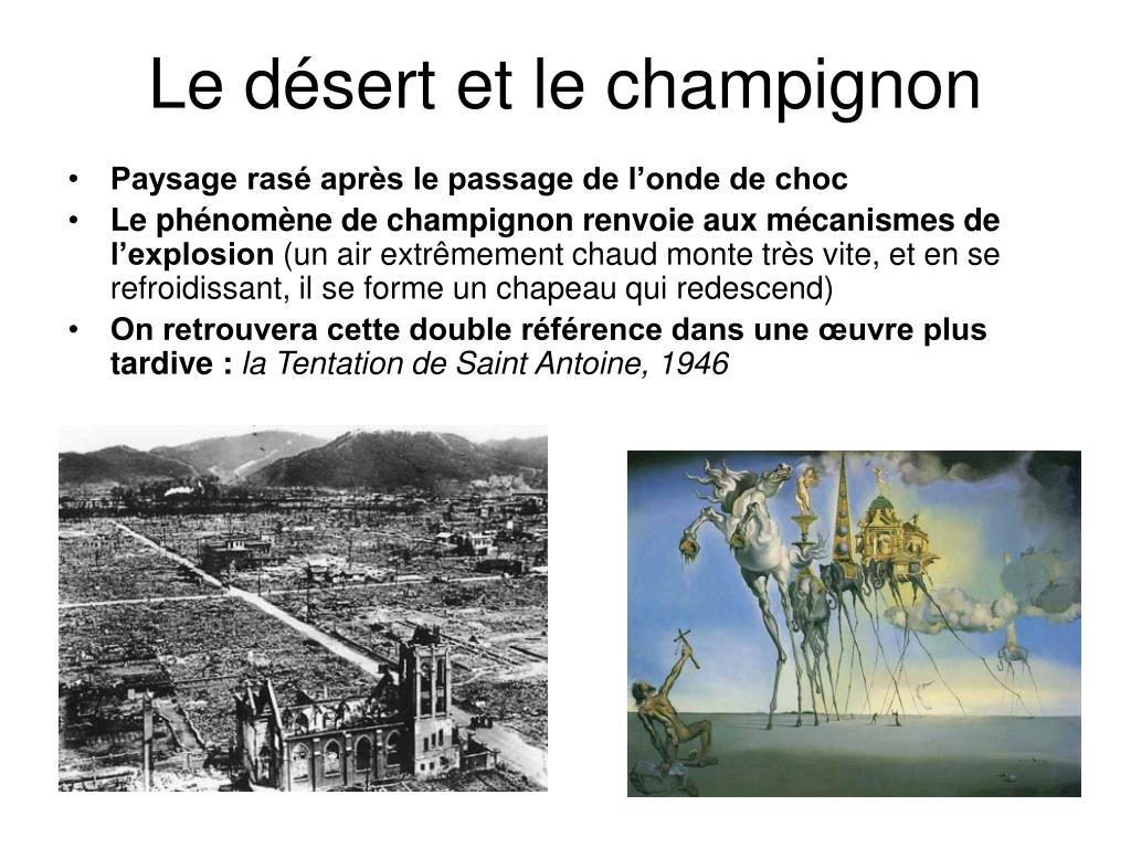 Le désert et le champignon
