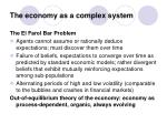 the economy as a complex system