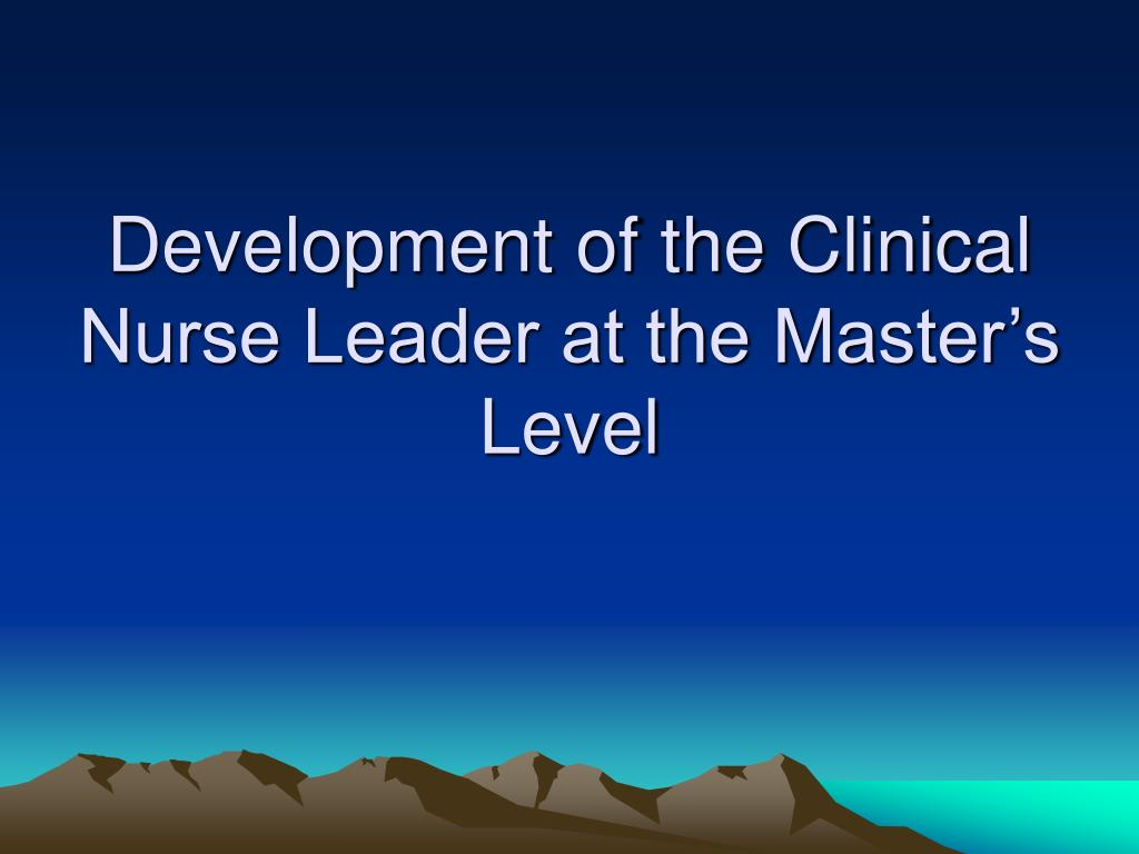 Development of the Clinical Nurse Leader at the Master's Level