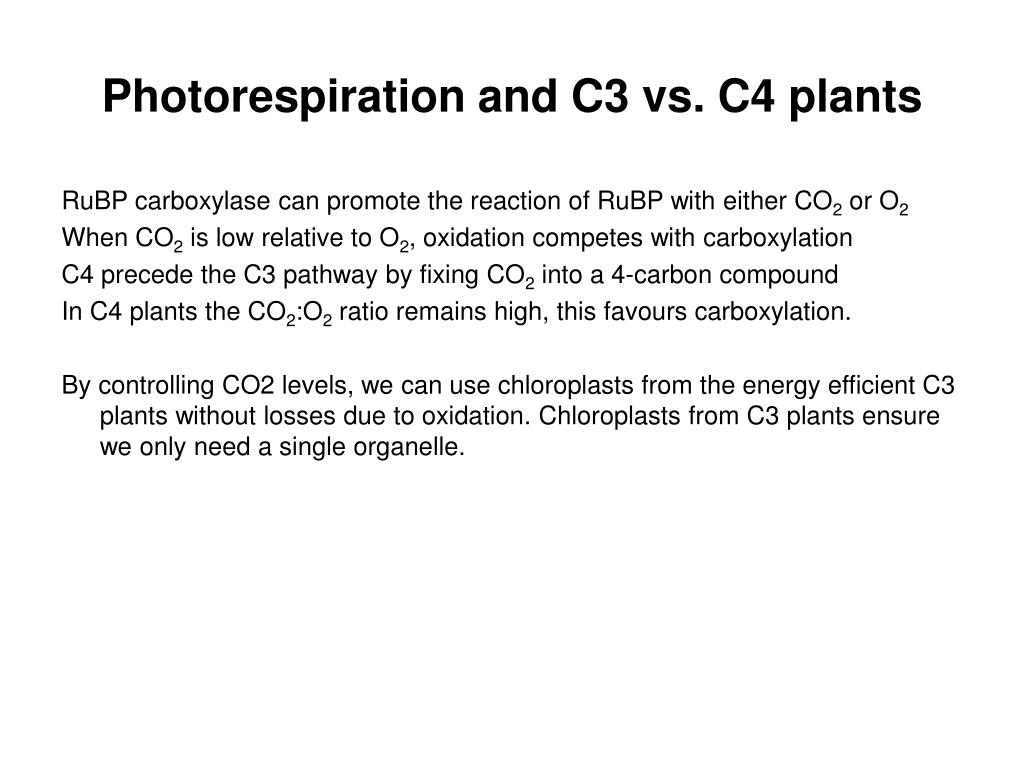 Photorespiration and C3 vs. C4 plants