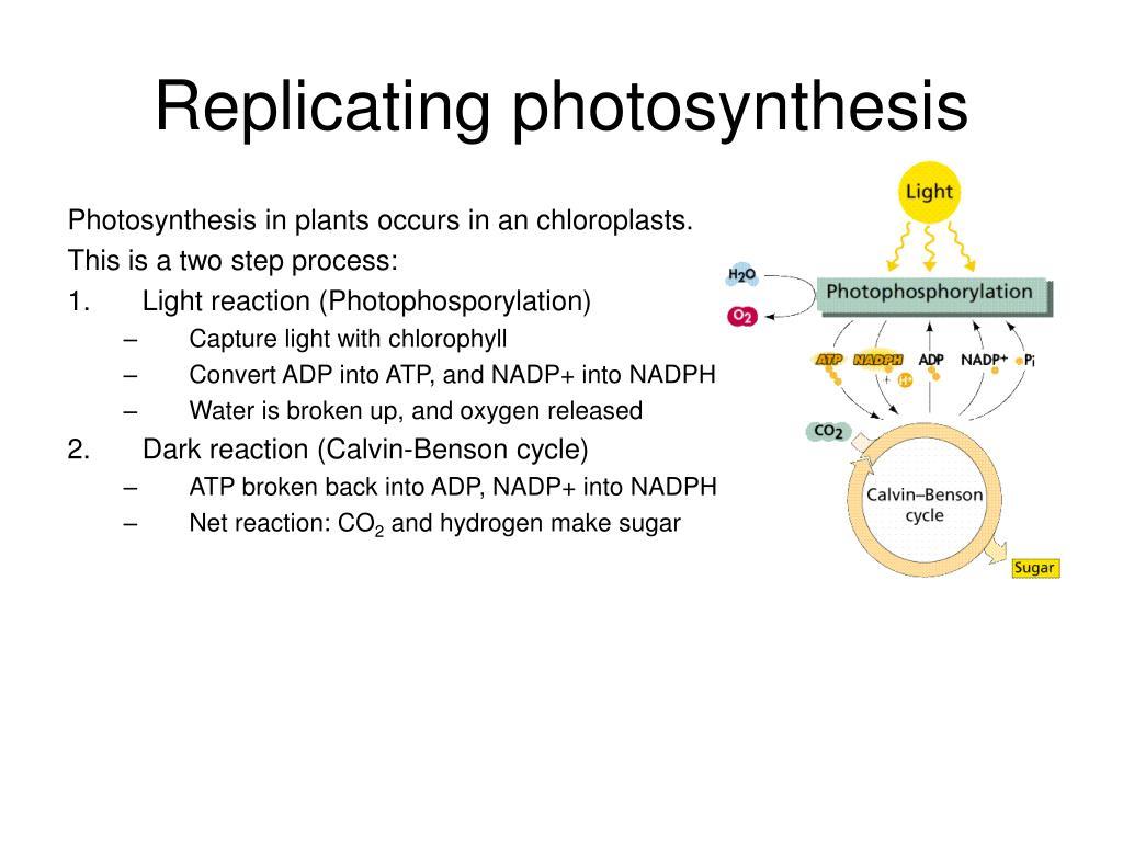 Replicating photosynthesis