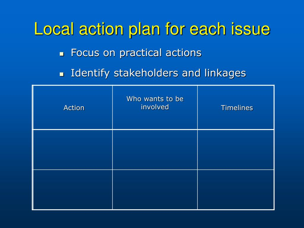 Local action plan for each issue
