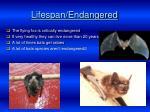 lifespan endangered