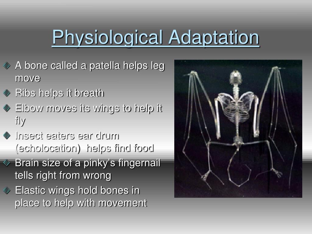Physiological Adaptation