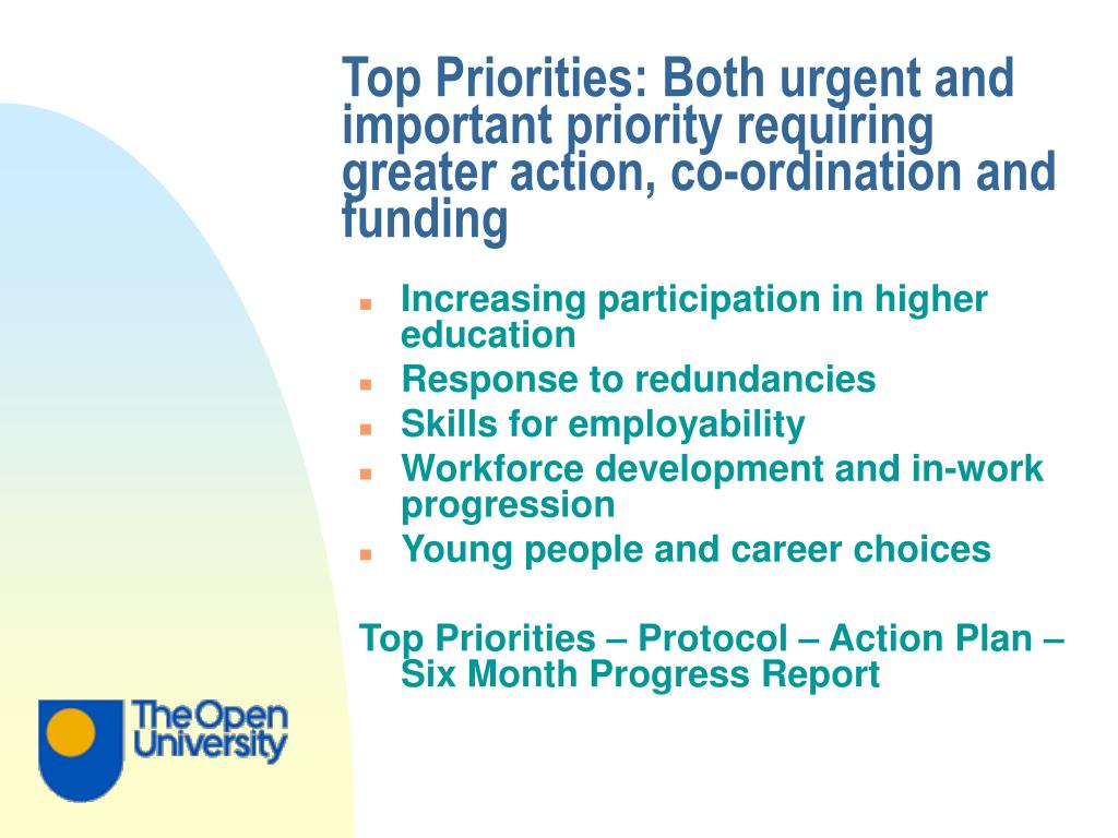 Top Priorities: Both urgent and important priority requiring greater action, co-ordination and funding