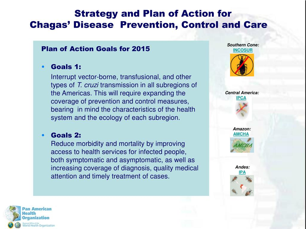 Strategy and Plan of Action for