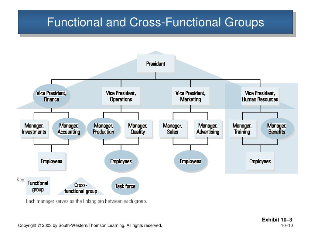 Functional and Cross-Functional Groups