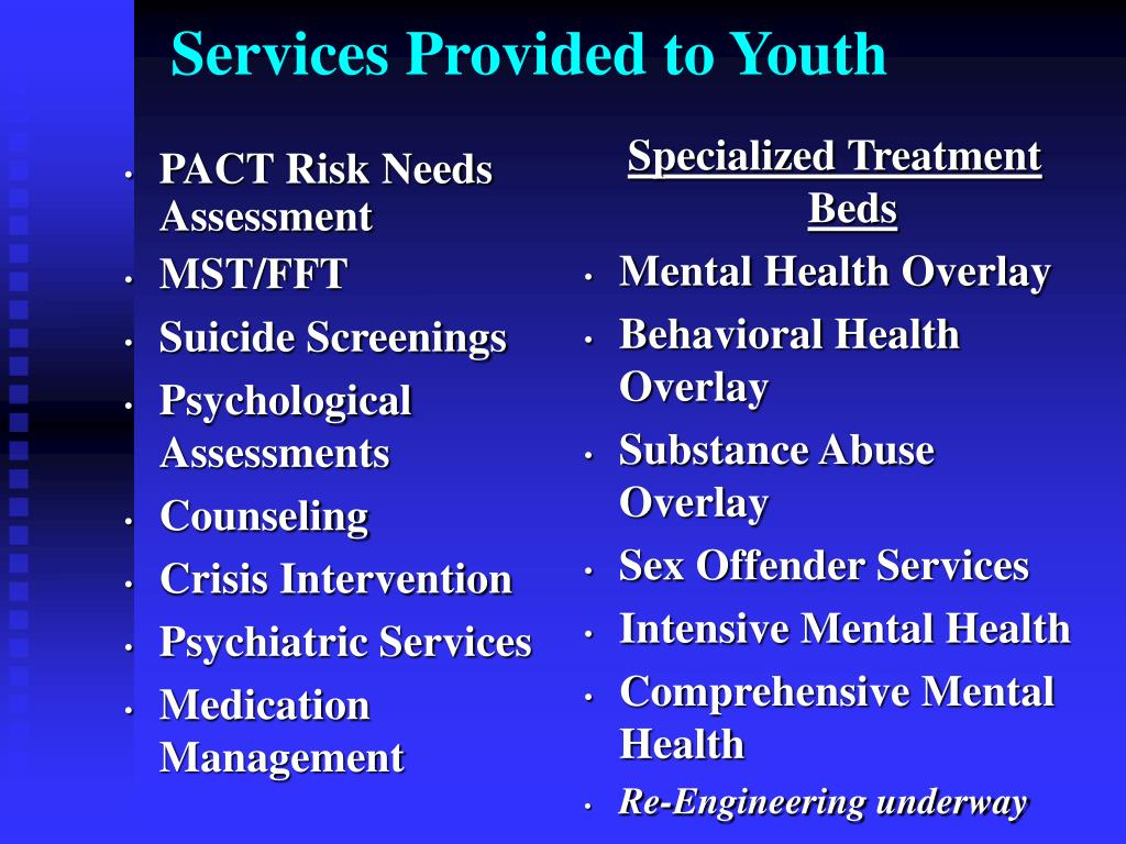 Services Provided to Youth