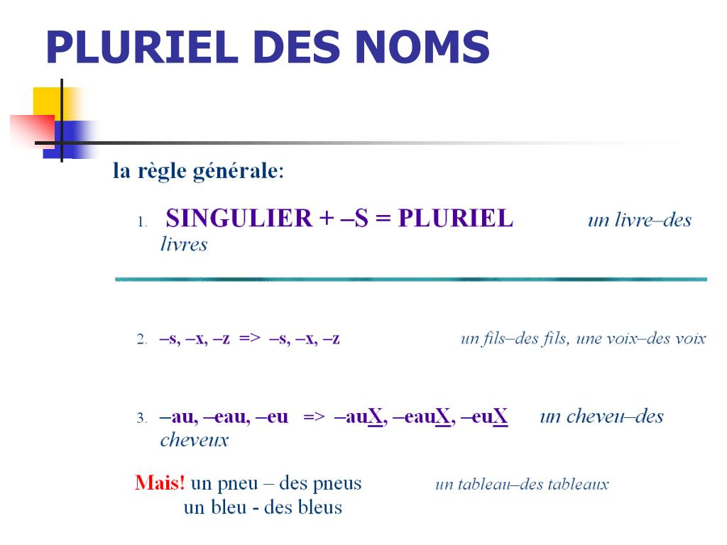 PLURIEL DES NOMS