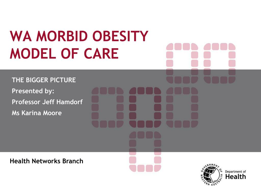 WA MORBID OBESITY MODEL OF CARE