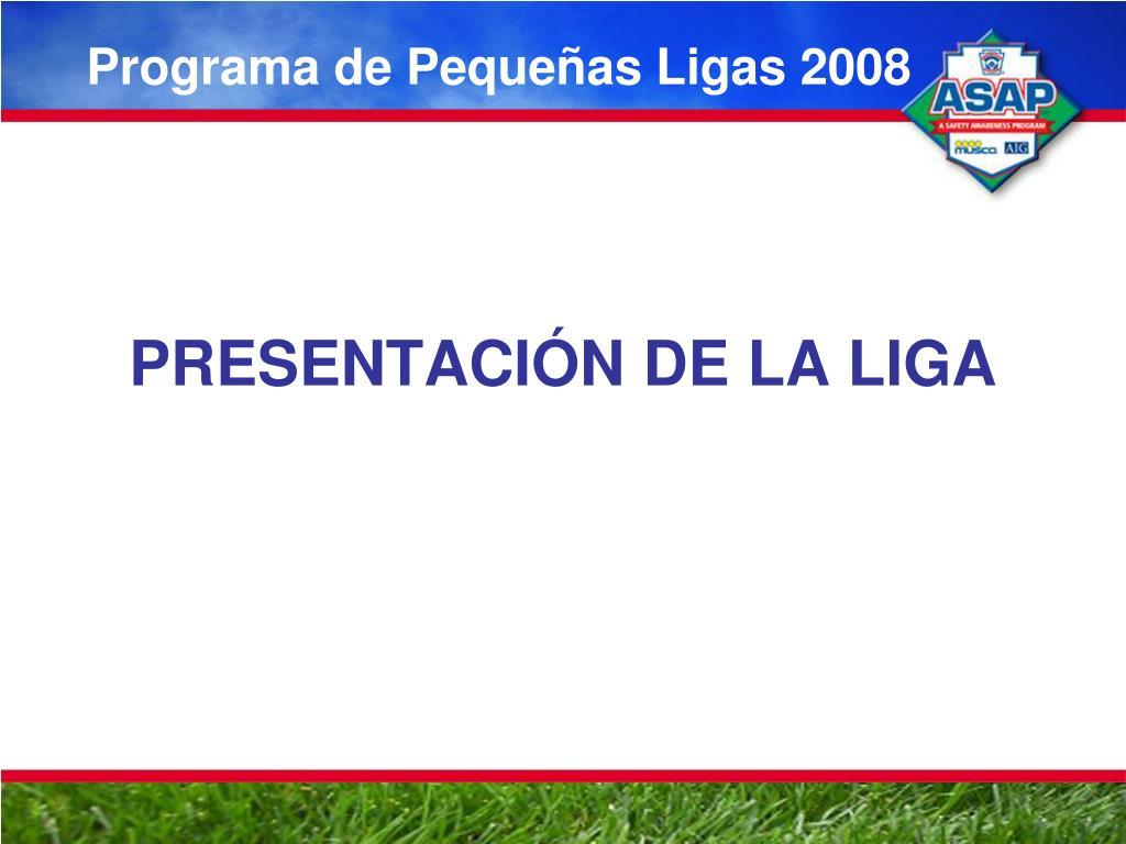 programa de peque as ligas 2008