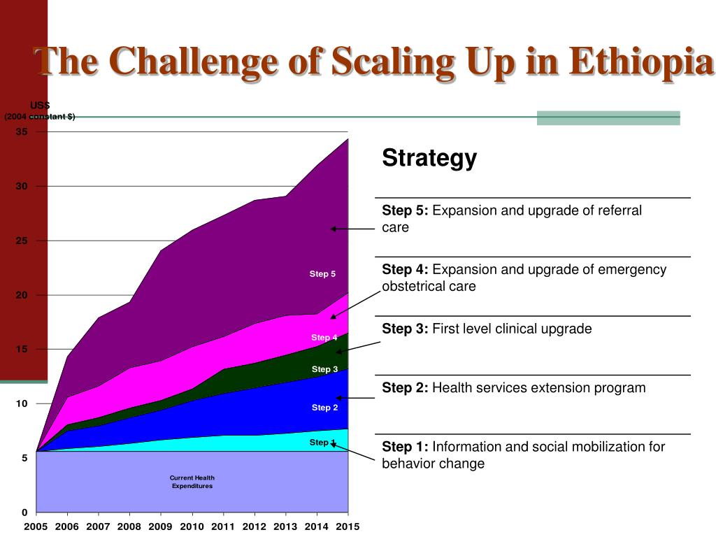 The Challenge of Scaling Up in Ethiopia
