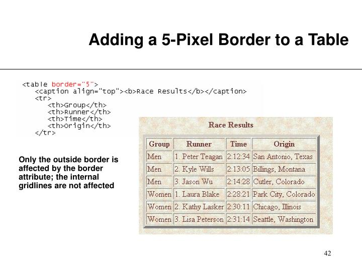 Adding a 5-Pixel Border to a Table