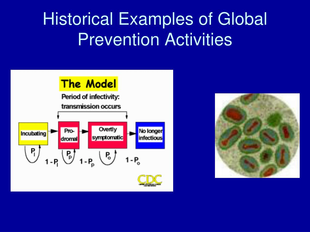 Historical Examples of Global Prevention Activities