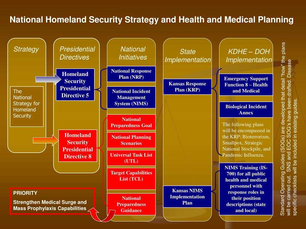 National Homeland Security Strategy and Health and Medical Planning