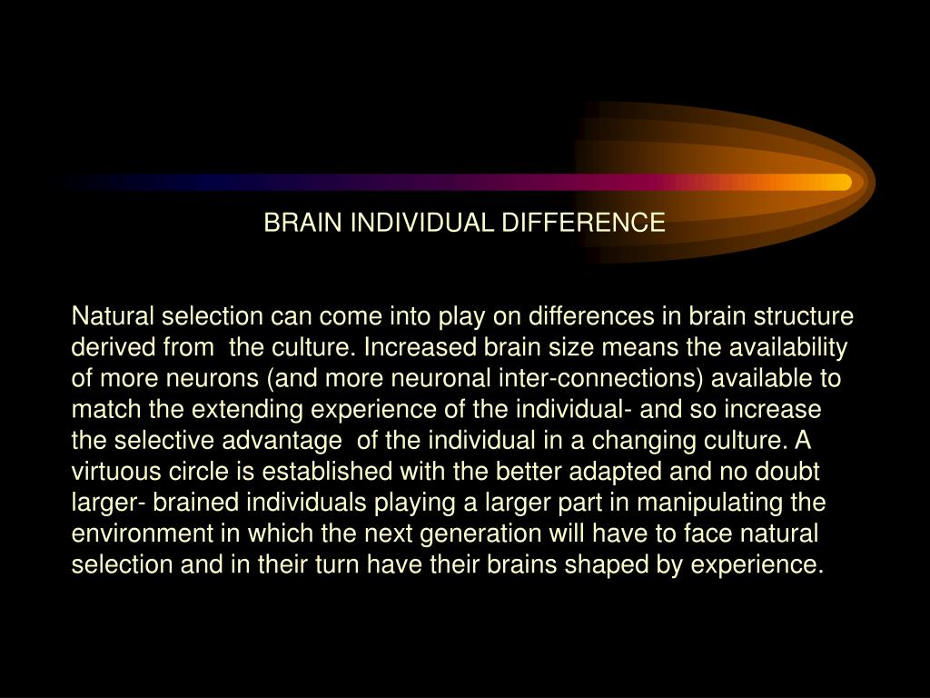BRAIN INDIVIDUAL DIFFERENCE