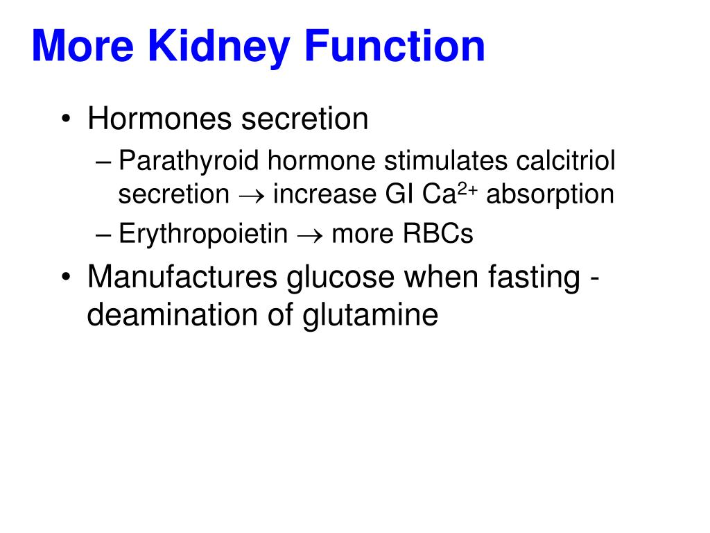 More Kidney Function