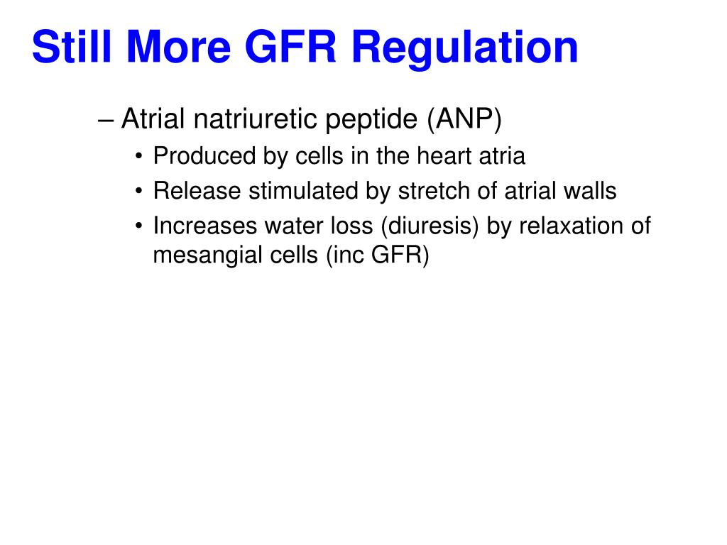 Still More GFR Regulation