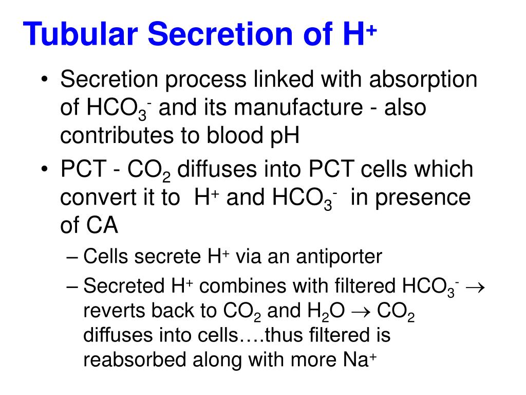 Tubular Secretion of H
