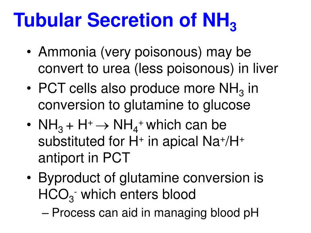 Tubular Secretion of NH