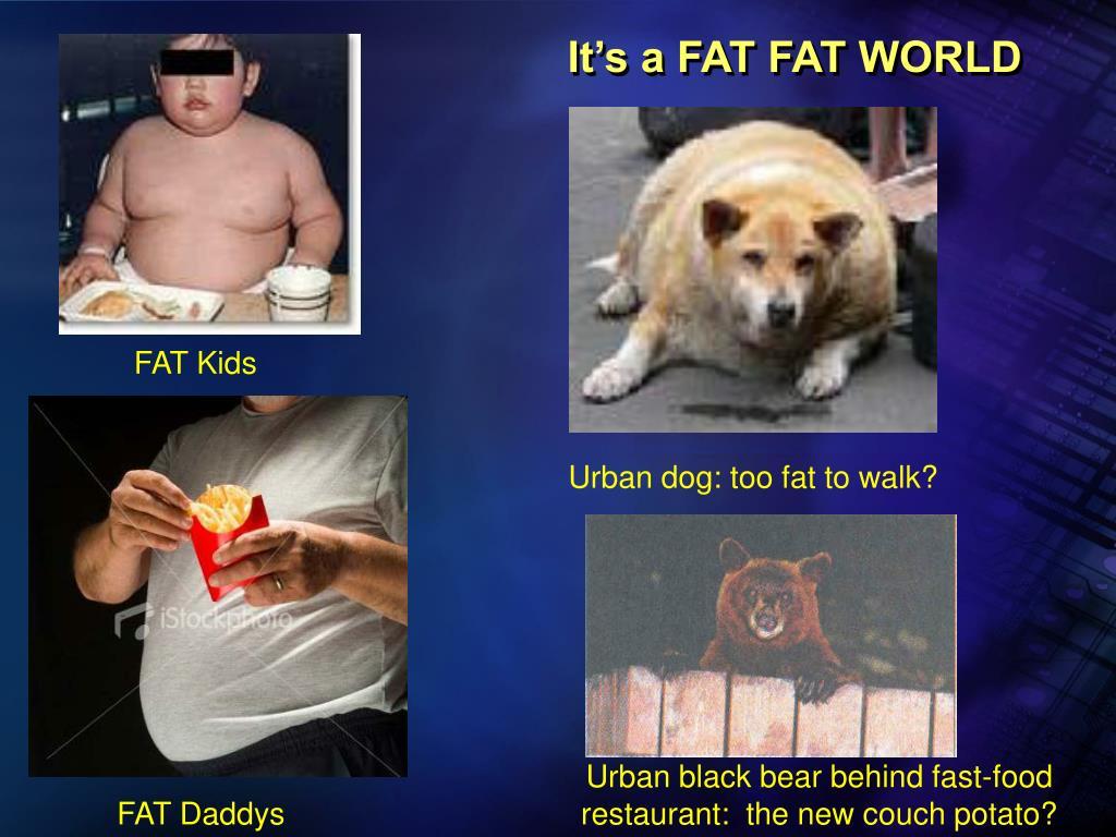 It's a FAT FAT WORLD