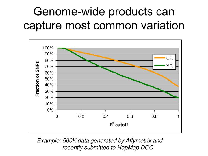 Genome-wide products can capture most common variation