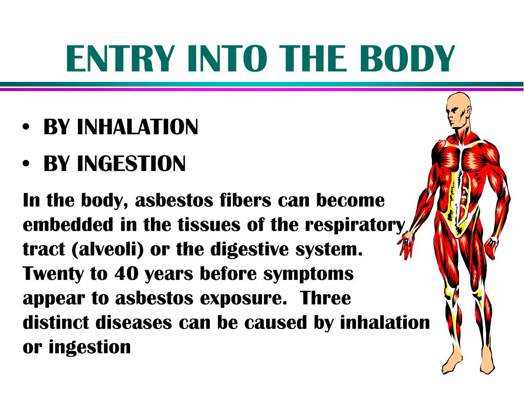 ENTRY INTO THE BODY
