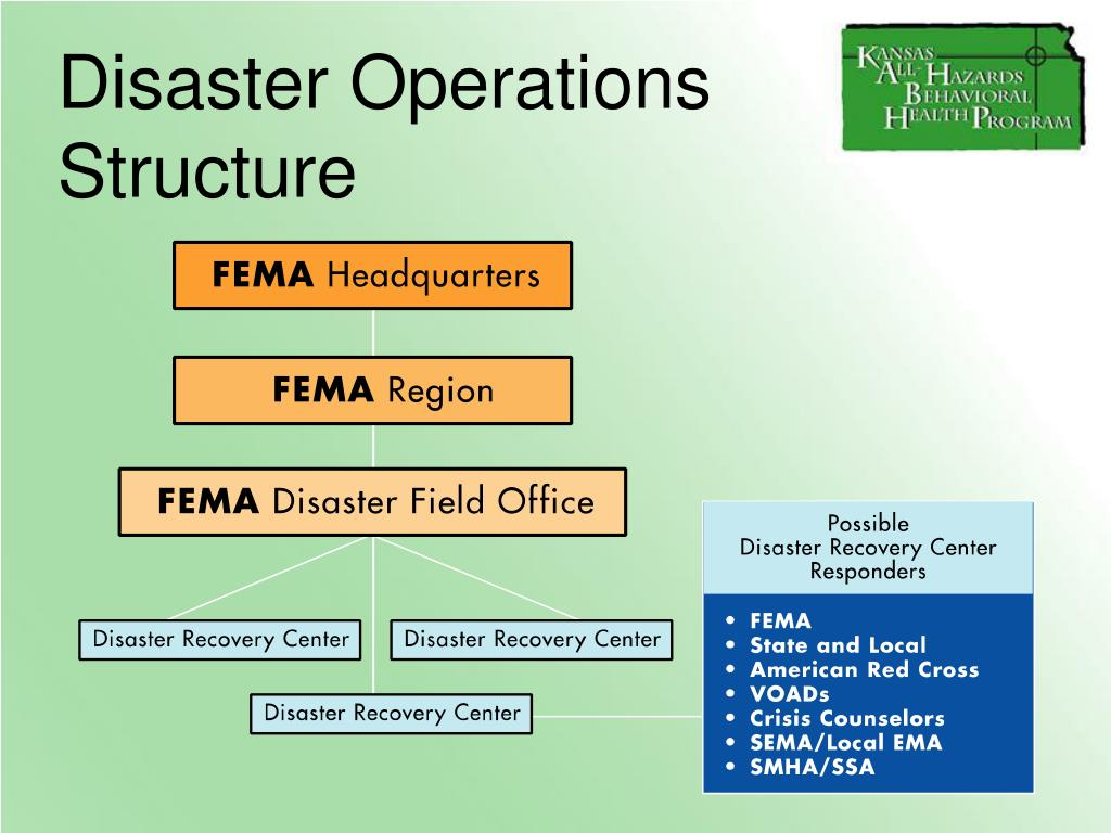 Disaster Operations Structure