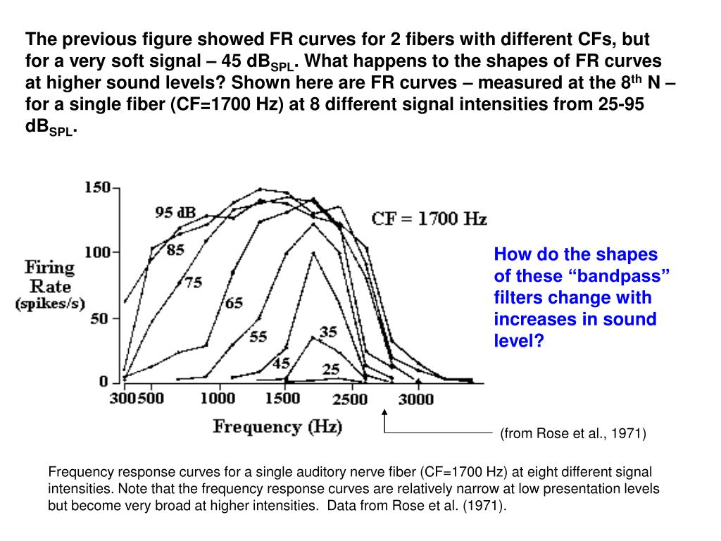 The previous figure showed FR curves for 2 fibers with different CFs, but for a very soft signal – 45 dB