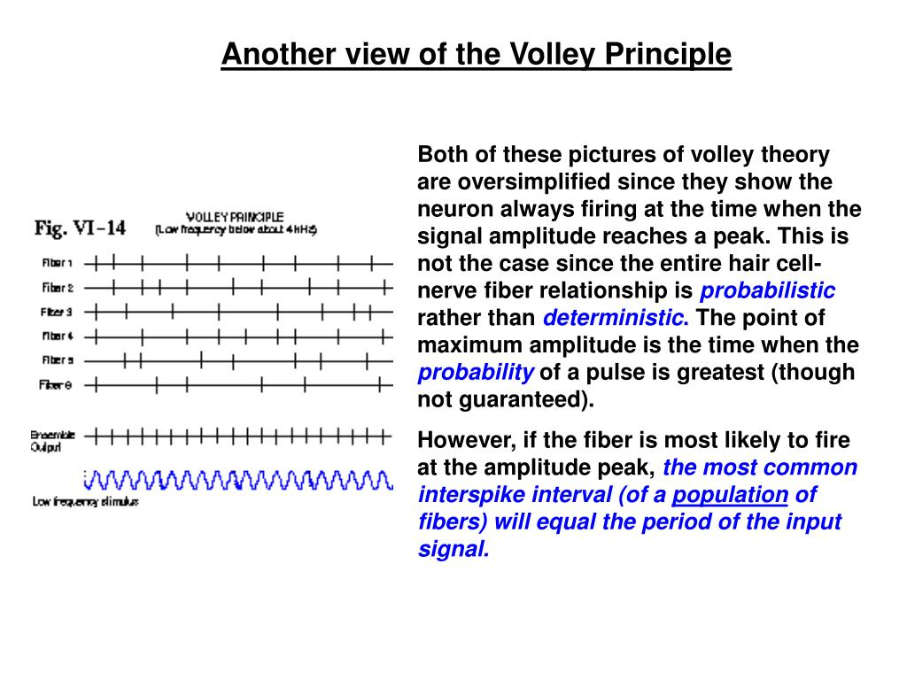 Another view of the Volley Principle