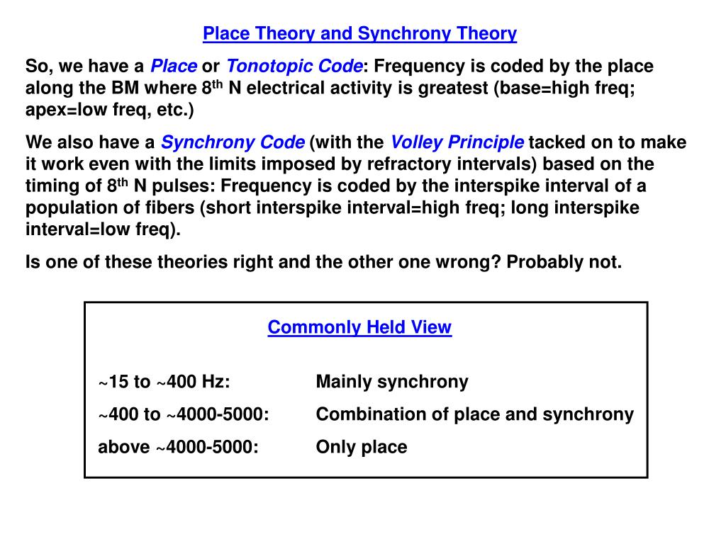 Place Theory and Synchrony Theory