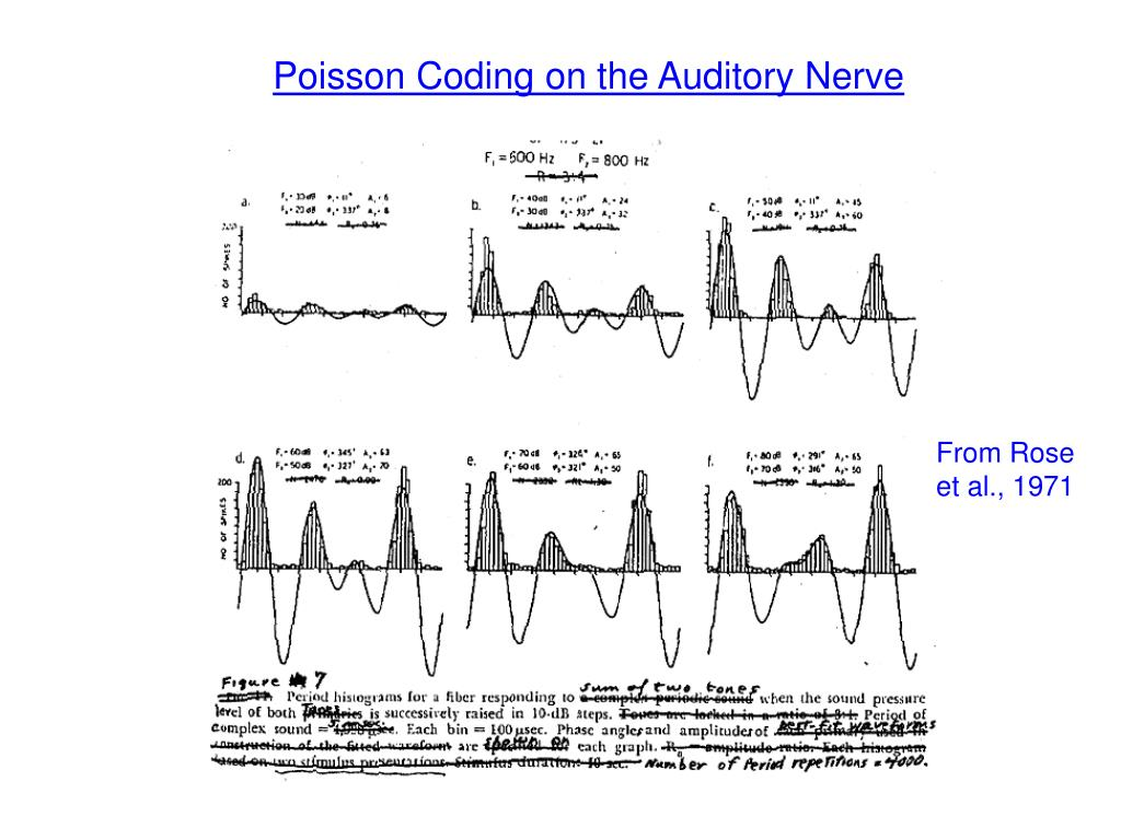 Poisson Coding on the Auditory Nerve