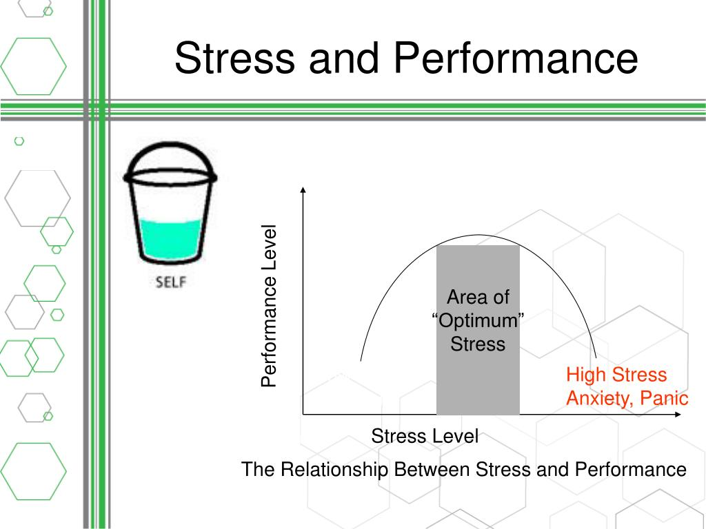 Stress and Performance