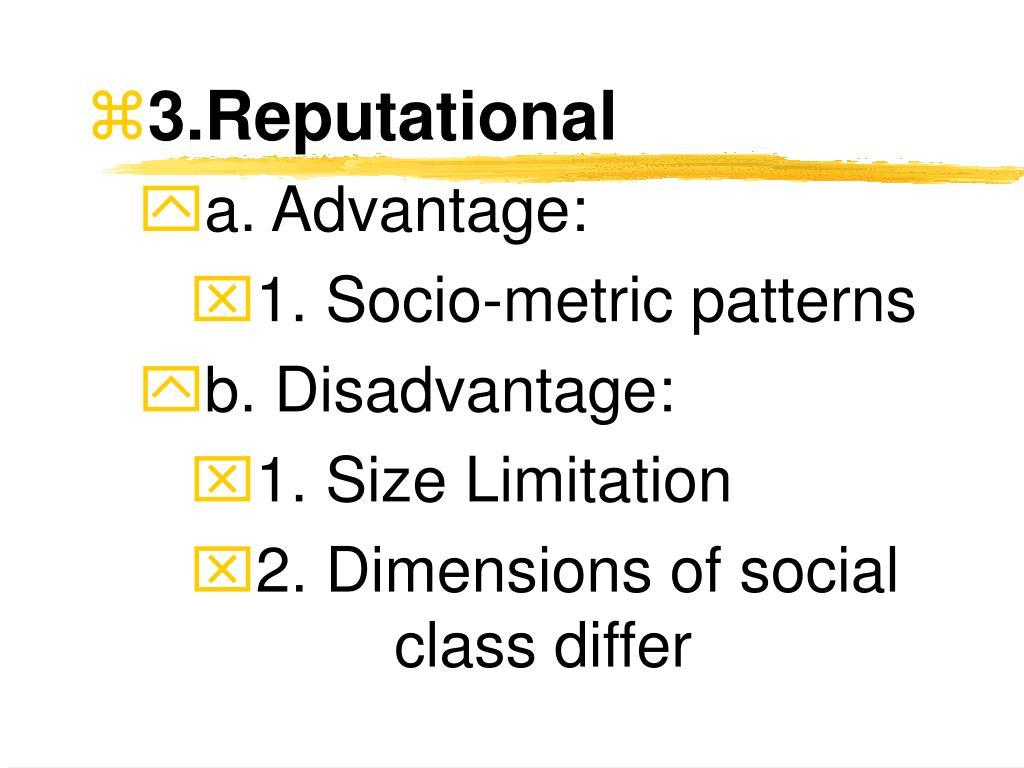 3.Reputational