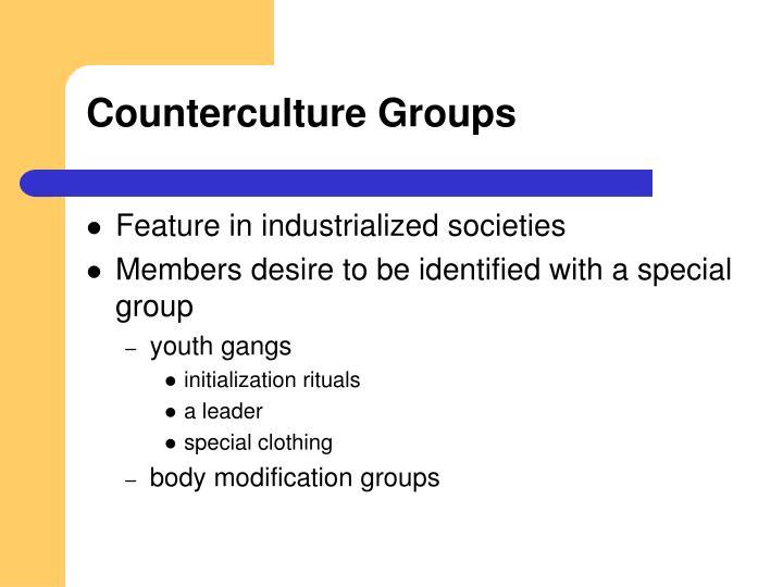 Counterculture Groups