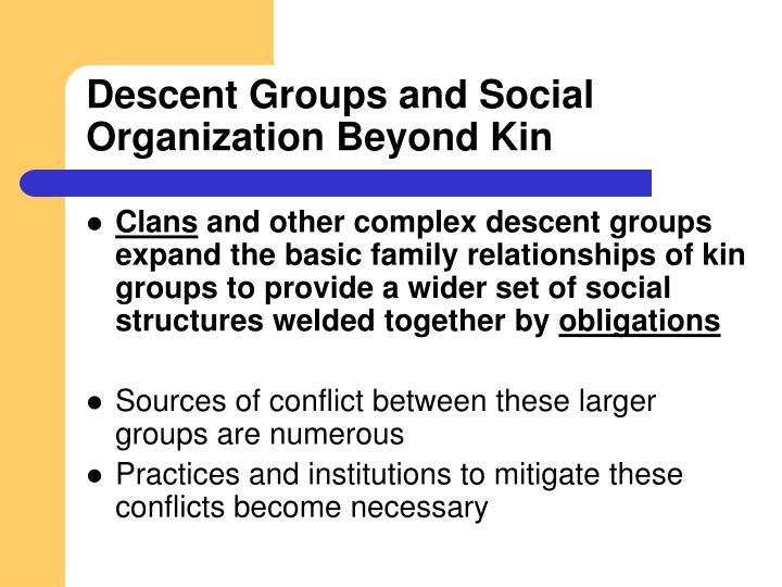 Descent Groups and Social Organization Beyond Kin