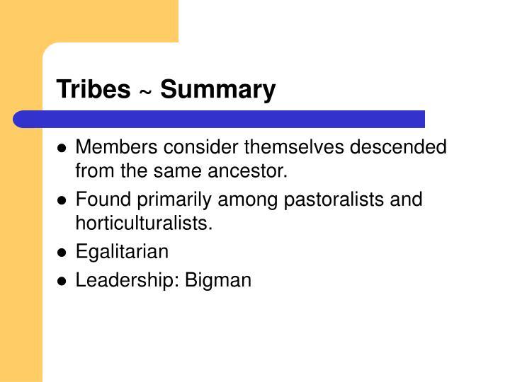 Tribes ~ Summary