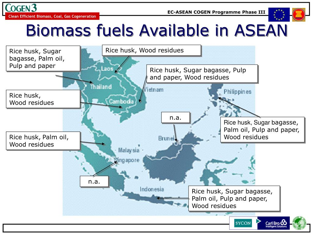 Biomass fuels Available in ASEAN