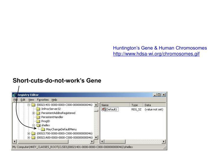 Huntington's Gene & Human Chromosomes