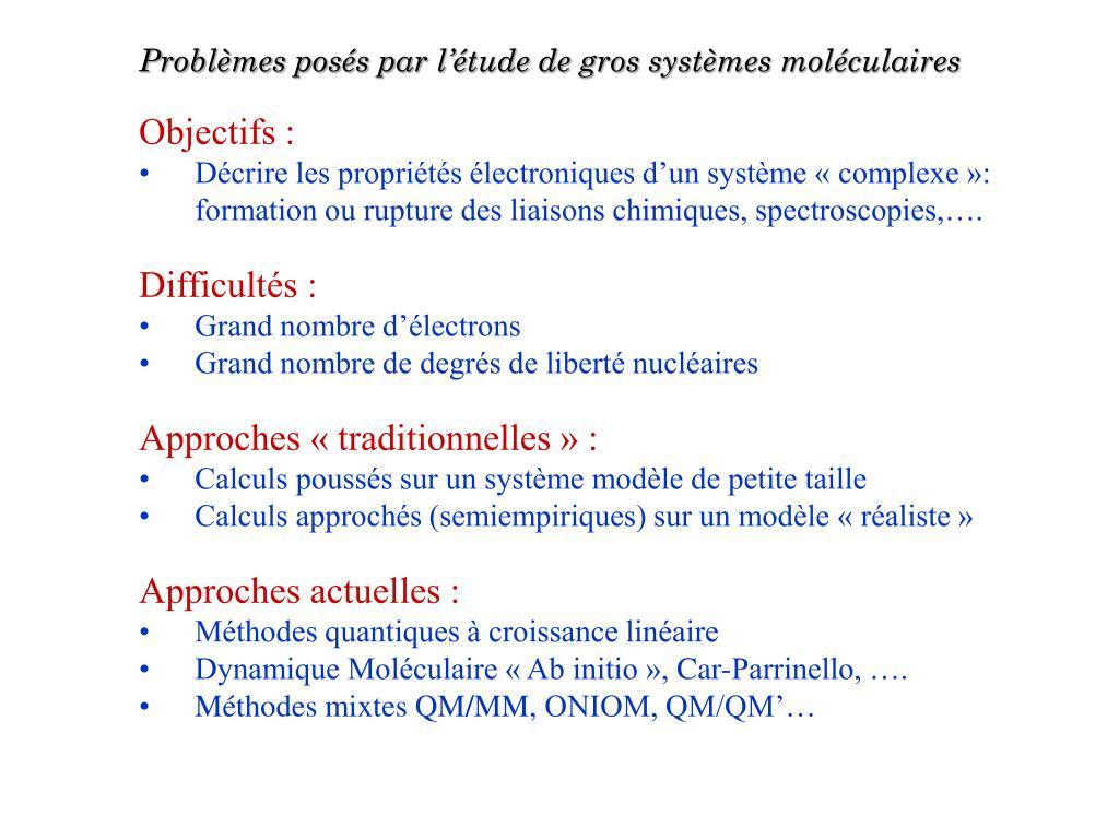 Problèmes posés par l'étude de gros systèmes moléculaires