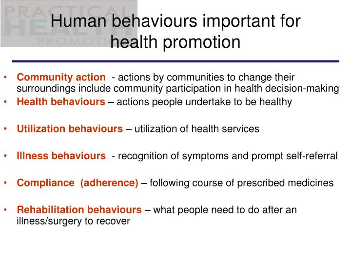 Human behaviours important for health promotion