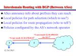 interdomain routing with bgp between ases