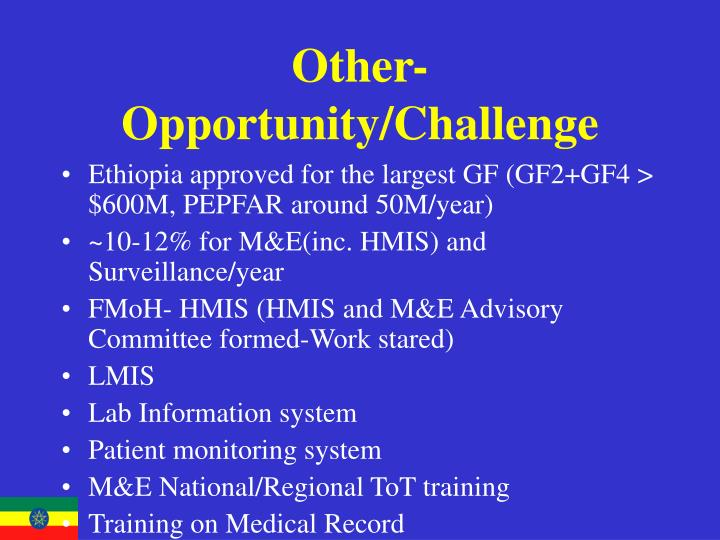 Other-Opportunity/Challenge